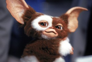 Cuddly Gizmo won the hearts of viewers of all ages