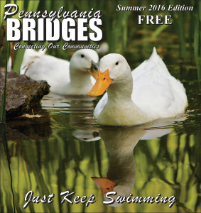 Pennsylvania Bridges - Summer 2016 - Just Keep Swimming!